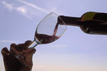 Human Wine Academy