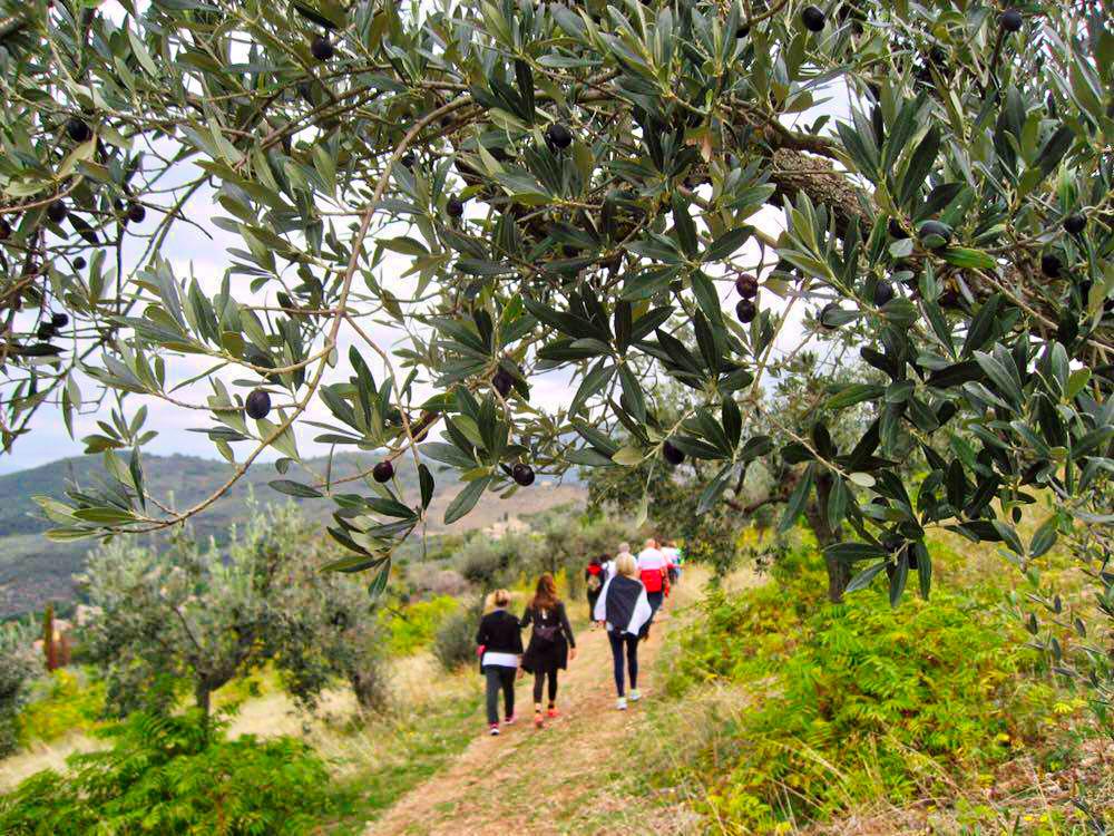 Turismo Rurale ed Enogastronomico