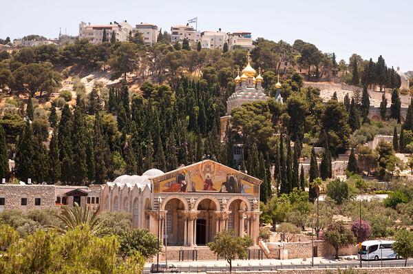 Con Dante a Gerusalemme