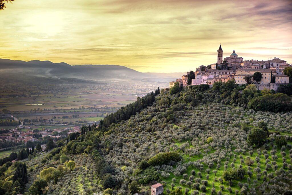 L'oleoturismo di qualità  in Umbria