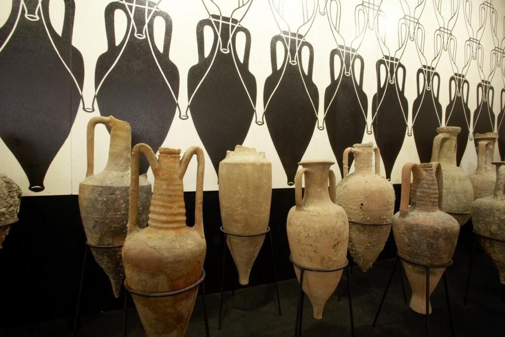 Tra arte, vino, olio e storia