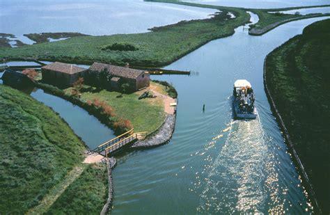 Delta del Po Paradiso per Birdwatching