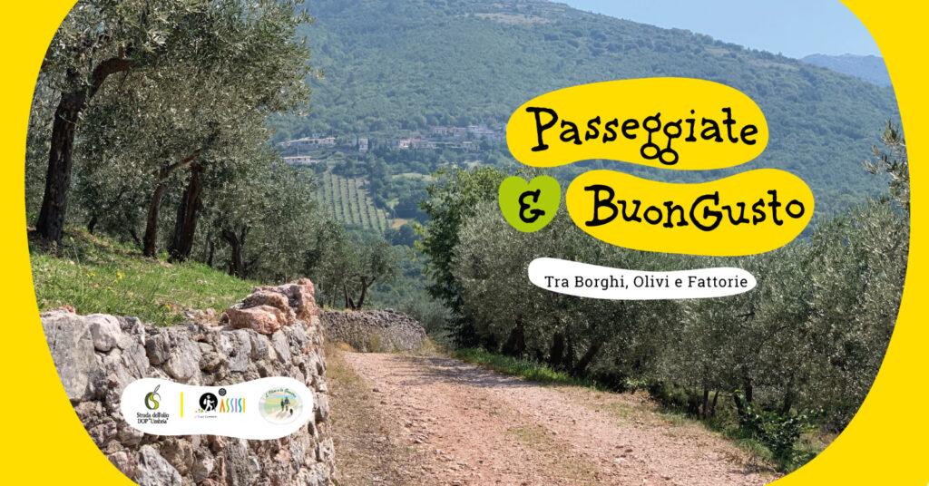 In Umbria Tra Borghi, Ulivi e enogastronomia