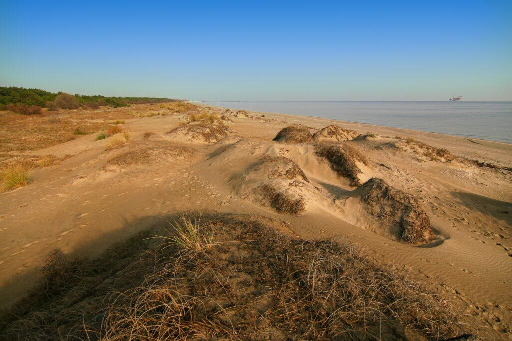 Delta del Po tra mare e natura